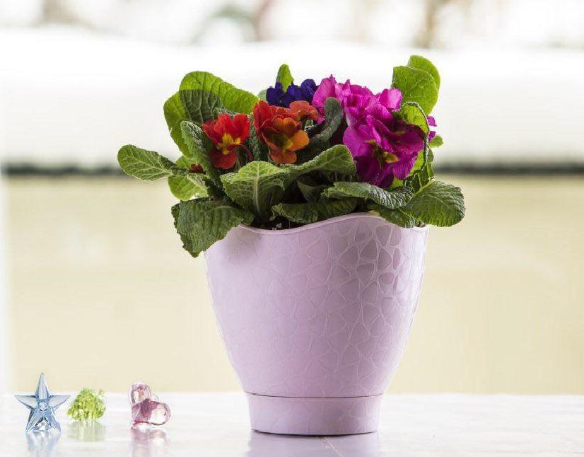 گلدان لاله طرح سنگی پلی نیک پخش و فروش عمده انواع گلدان فانتزی آپارتمانی 5000 و 10000 فروش